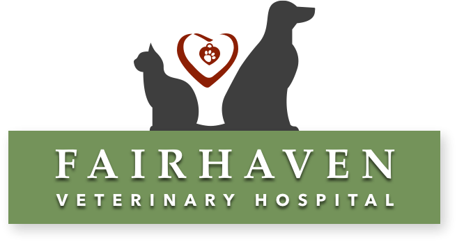 Fairhaven Veterinary Hospital